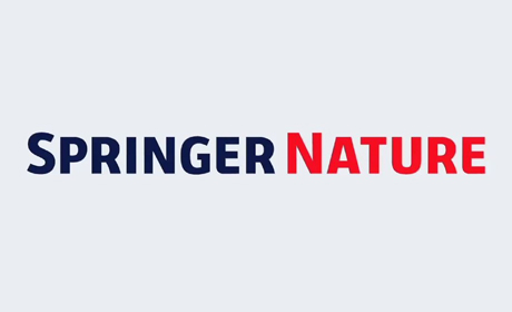 Call for chapters / The flexible workplace / Springer Nature